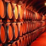 Recorre el mundo en busca de los mejores Vinos – Parte 2
