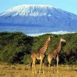 Las 5 principales atracciones en África