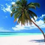 Isla Catalina, un pequeño paraíso con encanto