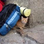 La mochila del viajero