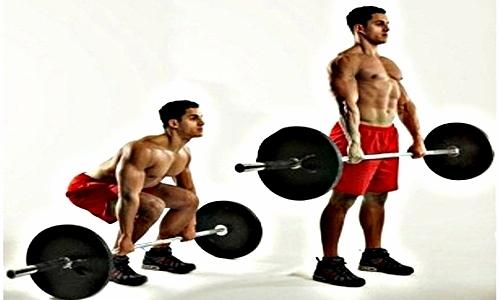 Los mejores ejercicios de musculación