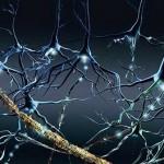 Beneficios del ejercicio físico para la Esclerosis Múltiple