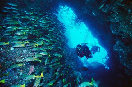 deportes extremos acuaticos